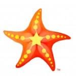 1-starfish-tm
